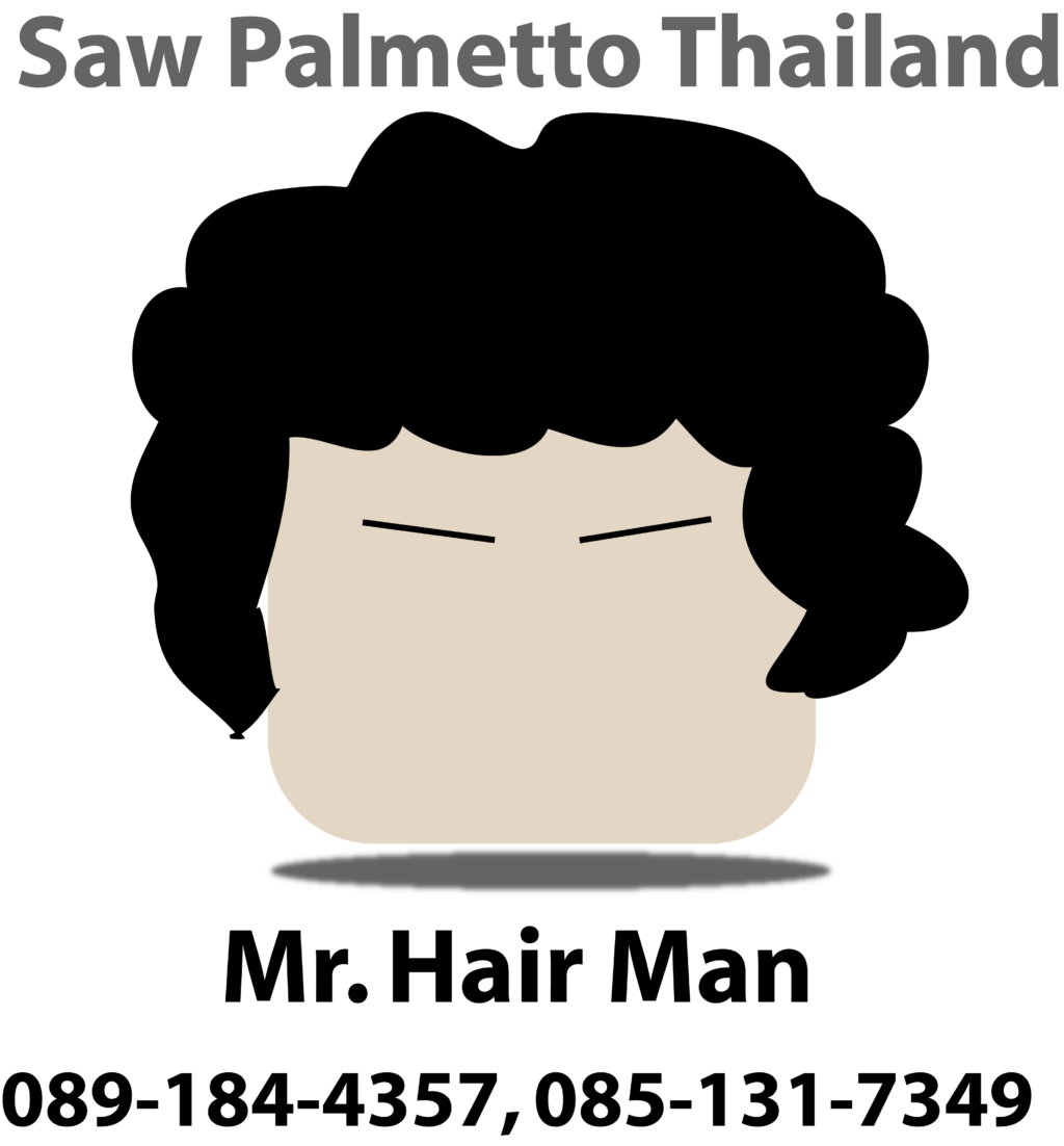 Saw Palmetto Thailand Logo