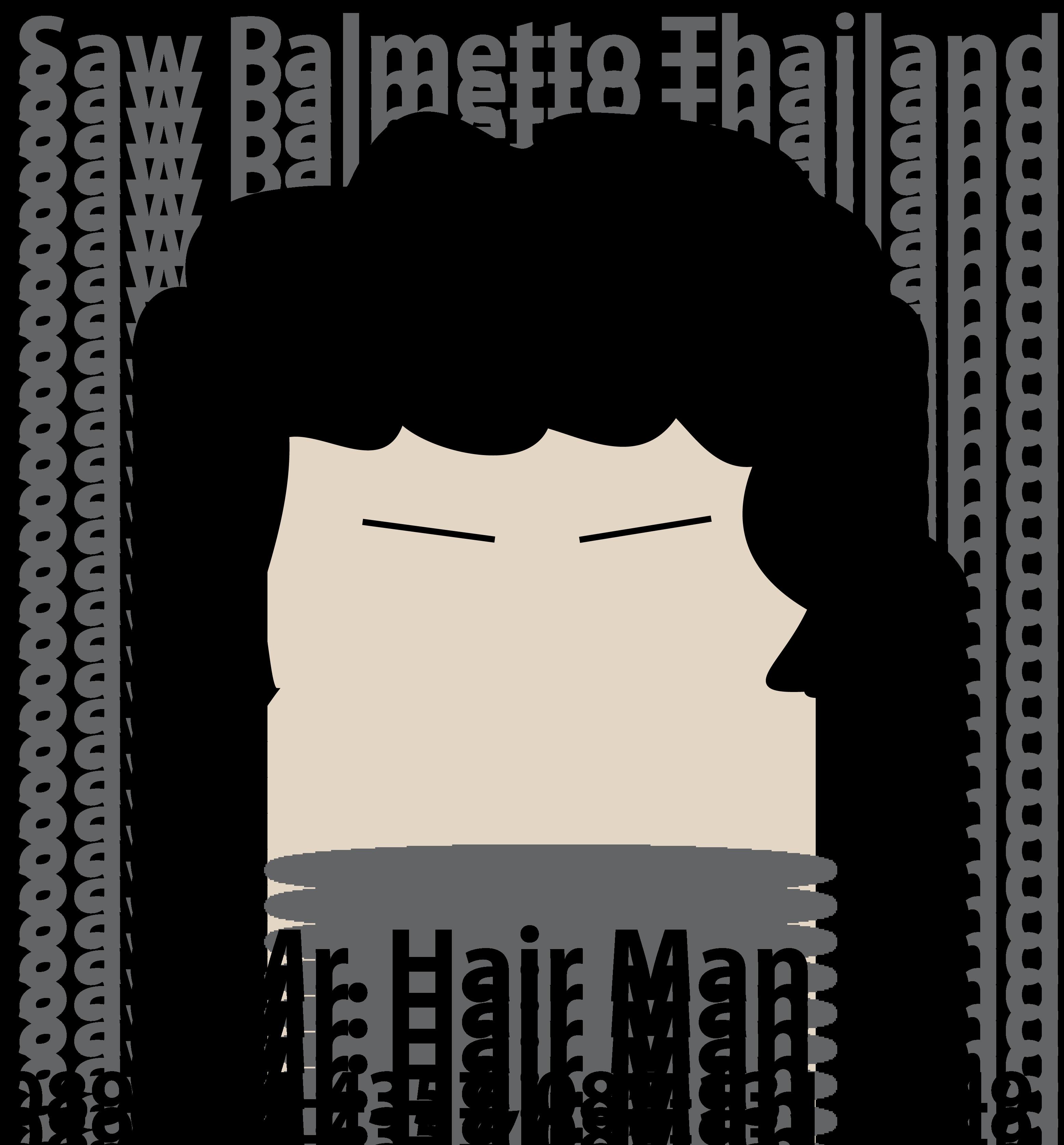 Saw Palmetto Thailand Logo